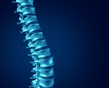 Data Centre: The Spine of The Modern Economy