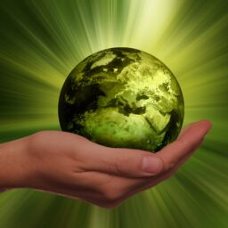 Achieving sustainability in a digitally connected world