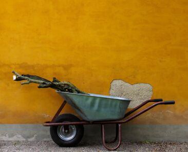 The wheelbarrow effect: cloud security under pressure